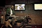 Bull Ride 10